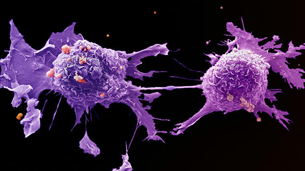 cancer more aggressive after chemo)