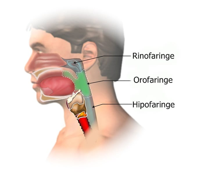 cancerul rinofaringian)