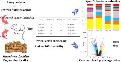colorectal cancer gene)