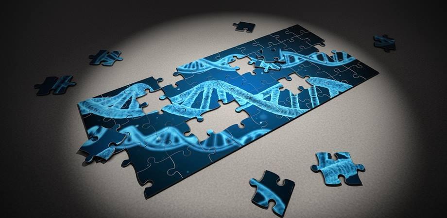 Genetica în cancer – despre sindromul cancerului ereditar | Blog | Medihelp