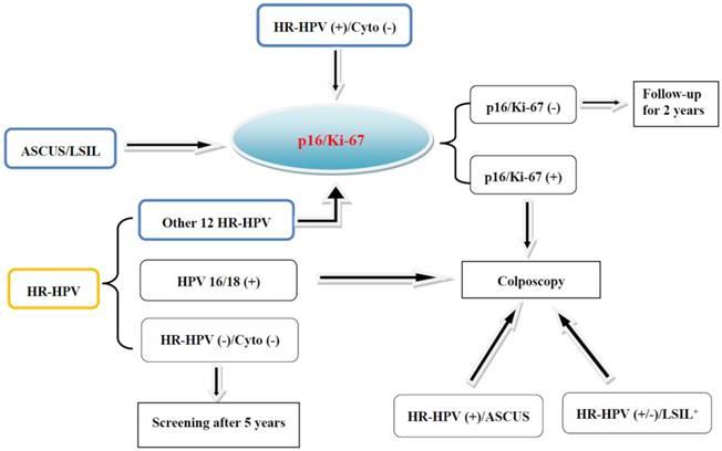 human papillomavirus and p16)