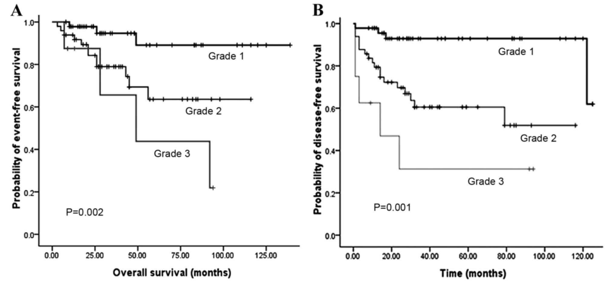 neuroendocrine cancer stage 4 prognosis
