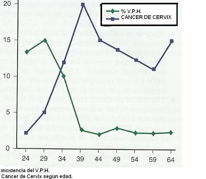 virus de papiloma humano por pcr femenino)