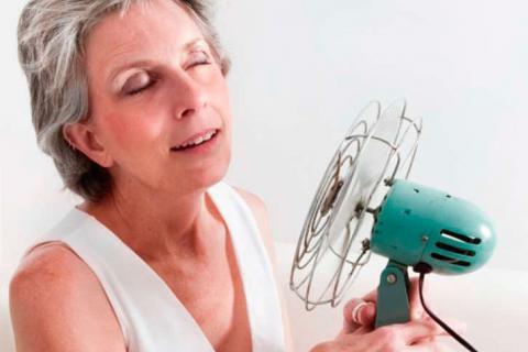 virus del papiloma y menopausia)