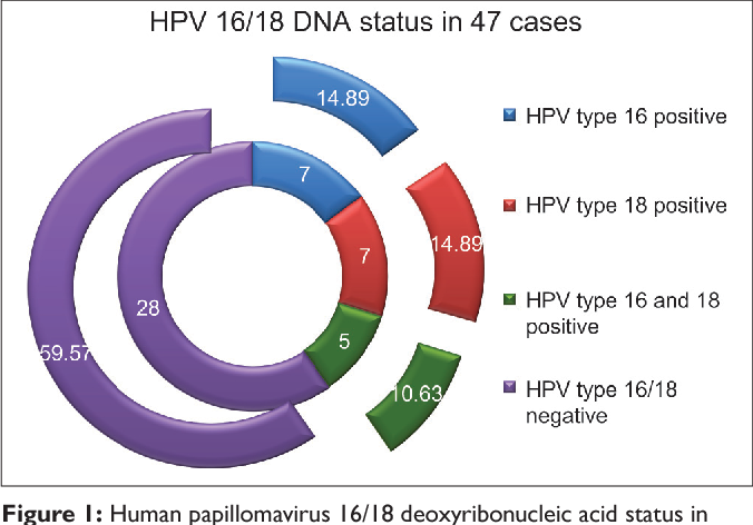 what is human papillomavirus type 16