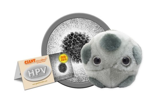 what is virus del papiloma humano)
